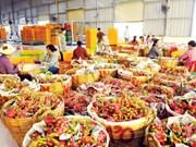 越南水果蔬菜出口有望创下新奇迹