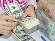 5日越盾兑美元中心汇率上涨10越盾