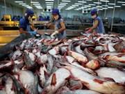 美国将对越南冷冻查鱼片征收较高的反倾销税