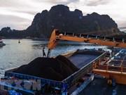 今年第一季度越南煤炭与矿产工业集团煤炭销售量达954万吨