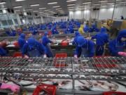 经济专家为越南改善经济增长质量建言献策