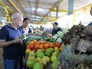 胡志明市将在古巴市场开展贸促工作