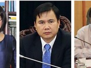 越南政府总理任命三名副部长
