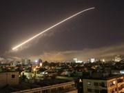 越南外交部领事局提请公民勿前往叙利亚