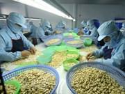 2018年第一季度越南腰果出口达7.39亿美元