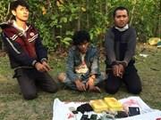广平省:逮捕非法运输毒品进入越南境内的三名老挝籍疑犯