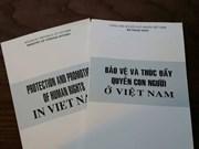 肯定越南保护和促进人权成就的白皮书