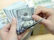24日越盾兑美元中心汇率上涨15越盾