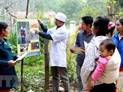 越南疟疾从防治走向消除