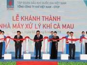 越南国会主席阮氏金银出席金瓯省天然气处理厂落成典礼