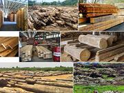2018年越南木材和木制品出口额可达90亿美元