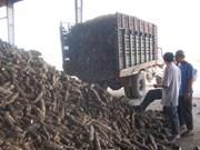 越南乂安省注重推进农林水产品出口