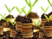 越南高速增长的经济日益吸引外国投资者的眼球