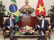 巴西外长对越南进行正式访问