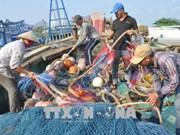 """欧委会开始对越南""""打击IUU非法捕捞""""措施落实情况进行检查"""