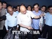 中部环境事故发生两年后:阮春福亲自检查承天顺化和广治两省赔偿工作