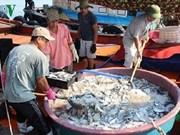 越南中部四省在海洋环境污染事故发生两年后当今的面貌