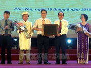 富安省举行发牌唱曲艺术联合国教科文组织人类非物质文化遗产代表作证书迎接仪式