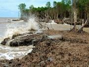 促进九龙江三角洲地区可持续发展和适应气候变化