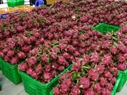 MM Mega Market公司每月向泰国出口150吨越南农水产品