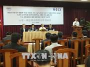 促进越南中国贸易投资合作
