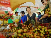 2018年第14届南部水果节活动丰富多样