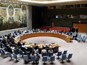 越南被推举为联合国安理会非常任理事国亚太地区唯一候选国