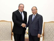 越南政府总理阮春福会见埃及新任驻越大使