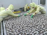 欧盟市场仍保持越南虾类产品最大进口市场地位