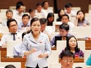 第十四届国会第五次会议:越南将不再有纯粹经营的国防企业