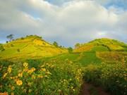 嘉莱省重视发展文化生态旅游