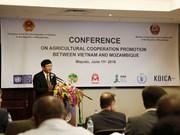 莫桑比克高度评价与越南的农业合作效果