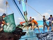 泰国多措并举打击非法捕捞活动