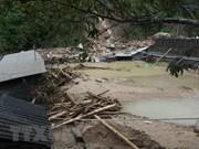 越南祖国阵线中央委员会致电慰问越南北部地区受灾群众