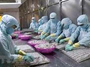 中国可成为越南最大水产品进口国