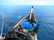 越南力争按照可持续模式发展渔业