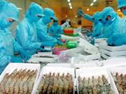从第三季度末越南虾类价格有望反弹