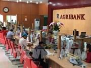Agribank加大技术投资力度 发展基于先进技术的服务产品
