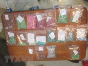 广治省破获一起毒品运输案 缴获4234粒合成毒品