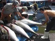 越南渔业着力完成年底目标任务