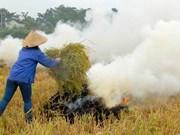创造绿色能源  减少农村环境污染