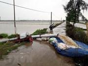 各省继续开展第三号台风后救灾工作