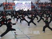 第五届胡志明市国际传统武术节吸引国内外98支武术团参加