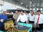 越南政府总理阮春福: 将大叻市打造成为东-西文化的象征