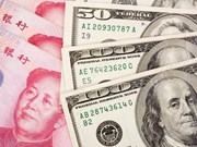 8月2日越盾兑美元汇率小幅波动 人民币和英镑汇率较为稳定