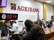 越南Agribank银行为高科技农业提供优惠贷款