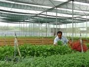 越南大力吸引对农业的投资
