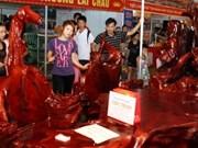 2011年越南将首次举办林产节