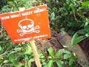越南努力克服炸弹地雷后果