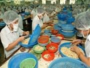 越南腰果出口量稳居世界首位
